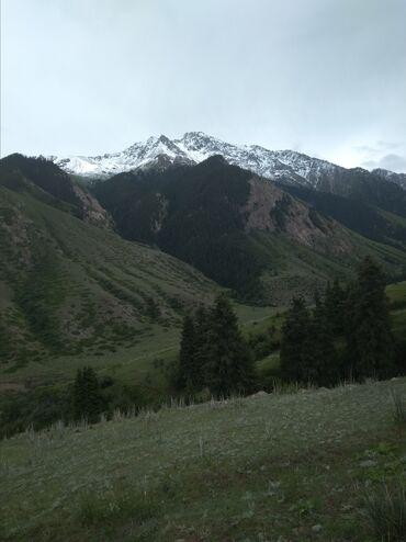 Аренда земельных участков в Кыргызстан: Аренда соток Строительство от собственника