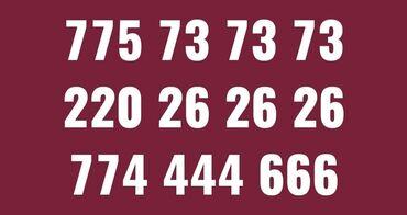 сколько стоит рабочая виза в южную корею в Кыргызстан: Билайн номерлер сатылат, оформление жасап беребиз775 73 73 73220 26 26