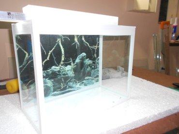 Bakı şəhərində Teze akvarium  24 litrelik