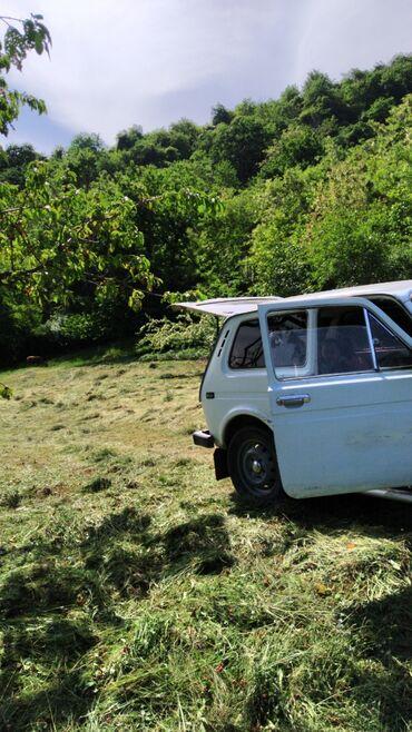 Avtomobillər - Zaqatala: VAZ (LADA) 4x4 Niva 1.6 l. 1984 | 38000 km