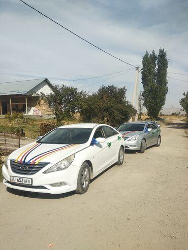 chastnye uroki po anglijskomu jazyku в Кыргызстан:   Региональные перевозки, По городу Легковое авто   4 мест