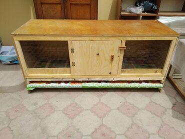 Ящик для бройлеров Кобб 500Бройлерге ящикБрудер на 150-180 цыплятДлина