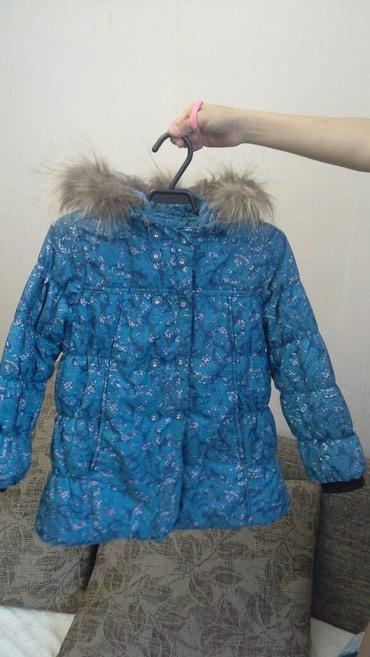 holodilnik i kondicionerov в Кыргызстан: Куртка sela в хорошем состоянии. На возраст 5-6 лет. Длина рукава 41 с
