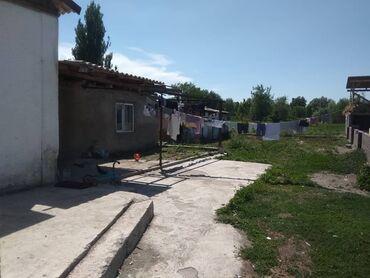 Недвижимость - Александровка: 800 кв. м 4 комнаты