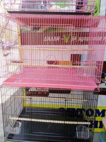 вольер для щенков в Кыргызстан: Продаются вольеры-клетки для птицы,60см. розница цветных
