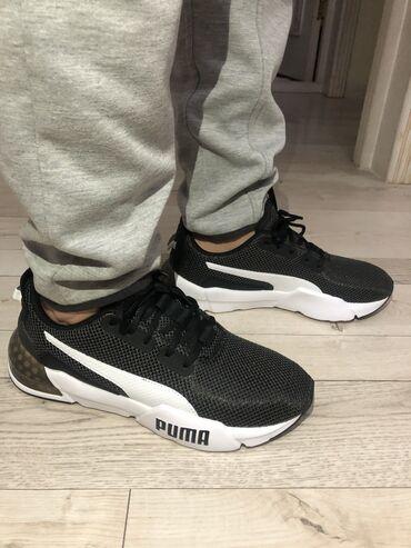 shtany messi adidas в Кыргызстан: Продаю кроссовки оригинал Nike,Adidas,Puma (цены разные, уточняйте)