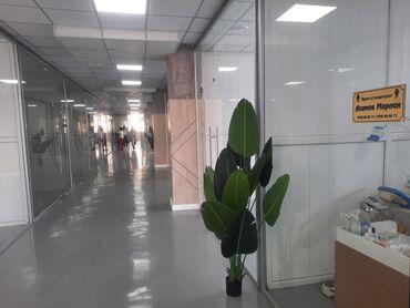 ассистент стоматолога бишкек in Кыргызстан | СТОМАТОЛОГИЯ: Требуется врачи стоматологи на основе аренды Стом кабинет имеет своих