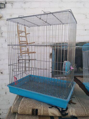 Животные - Буденовка: Клетки для птиц