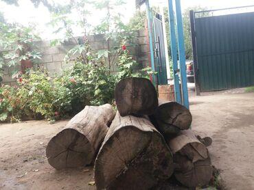 Уголь и дрова - Сокулук: Уголь и дрова