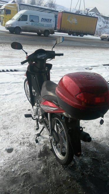 Мотоциклы и мопеды - Кок-Ой: Скутереллы 4-ст,4х-тактный мотор Хонда, дисковые тормоза,новые!в