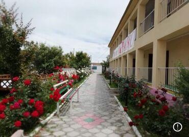 отели бишкека in Кыргызстан   КОРОВЫ, БЫКИ: 320 кв. м, С оборудованием, Действующий
