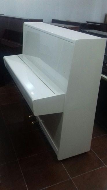 Gəncə şəhərində Piano və fortepianolar