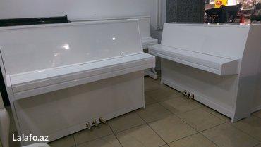 Bakı şəhərində Petrof Sonatina 117 ve Petrof Sonatina 107 model 3 pedallı akustik