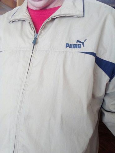 Muska lagana jakna vel XL. Ramena 62cm, rukavi 65, duzina jakne 80cm. - Crvenka