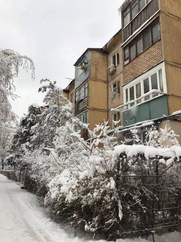 продам пуделя в Кыргызстан: Продается квартира: 1 комната, 30 кв. м