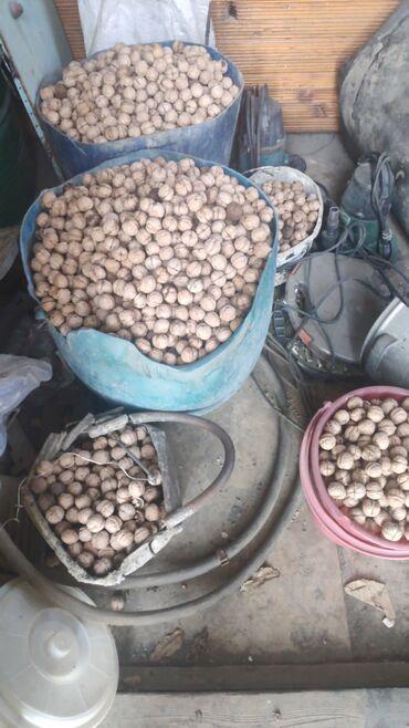 трекинговые палки бишкек in Кыргызстан | ДРУГОЙ ДОМАШНИЙ ДЕКОР: Продаю грецкие орехи цена за кг