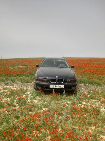 BMW 520 2 л. 1997 | 280 км