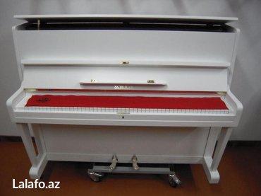Bakı şəhərində Çexiya istehsalı Scholze piano - ünvana çatdırılma, köklenme ve