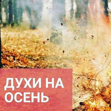 кофемашина lattissima touch black в Кыргызстан: Обновить свой парфюмерный гардероб крайне важно! Даже если совсем