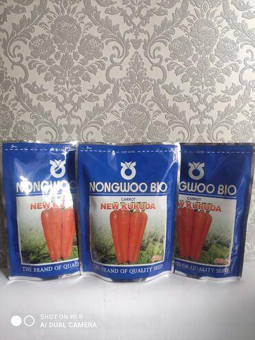 здоровое сердце в Кыргызстан: Семена: Морковь Нью Курода фирма NongWooBio(Корея)Раннеспелый сорт