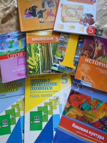 Lepo očuvani udžbenici za 5. razred osnovne škole:1. Engleski