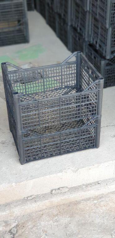 Другие товары для сада в Ак-Джол: Пластиковые ящики . Размер (?20)