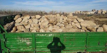 Камни камни камни быстрая доставка