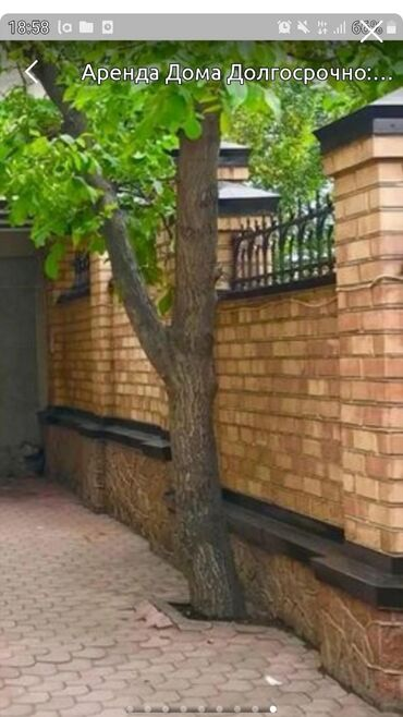 Недвижимость - Чон-Таш: 100 кв. м, 1 комната