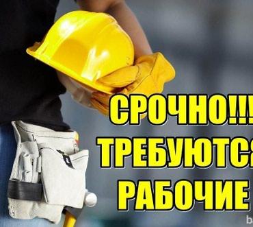 Требуются сантехники электрики в Лебединовка