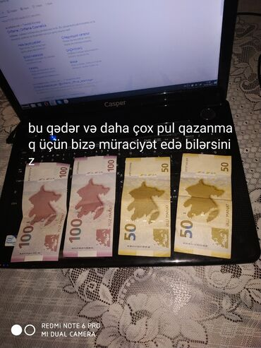 Bir evdar xanım olaraq mən bu qədər və daha çox pul qazana bilirəmsə