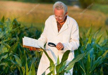 Требуется агроном в компанию «Business» в Бишкек