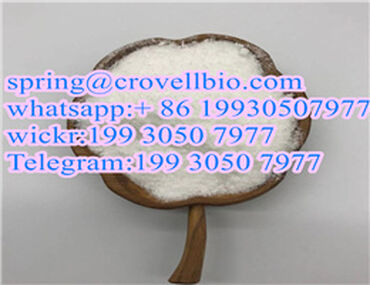 CAS 9048-46-8 Serum albumin with factory supply +86 spring@crovellbi