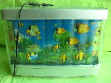"""Освещение - Кара-Балта: Ночник """"Океан"""" Плавающие рыбки. Рабочий!"""