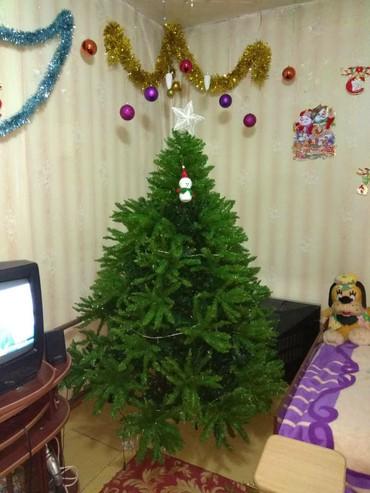 Продается шикарная новогодняя елка, в Бишкек