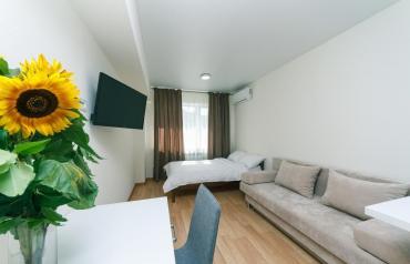 купить 3х комнатную квартиру в Кыргызстан: Евро апартаменты в центре города.  Уютно, чисто, комфортно. Евро ремон