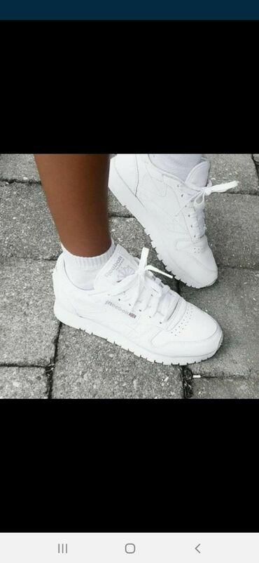 Ženska obuća | Zitorađa: Bele Reebok Classic  Brojevi od 36 do 41