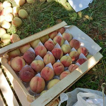 51 объявлений: Овощи, фрукты