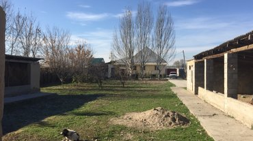Продаю 6 -ком  дом, все документы в в Бишкек - фото 7