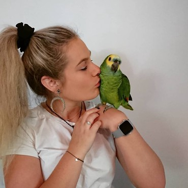 Buy amazon parrot breeders σε Naousa