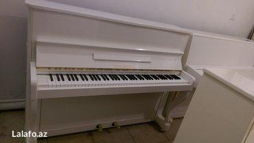 Bakı şəhərində Pianino Gebr Niendorf - ideal royal seslenmesine sahib alman