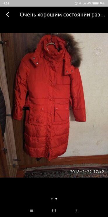 Куртки - Кара-куль: 46размер очень хорошем состоянии, длинные и качество хорошие