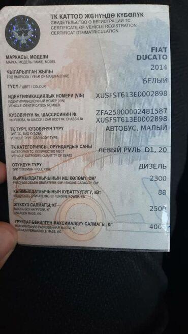 Fiat - Кыргызстан: Fiat Ducato 2.3 л. 2014