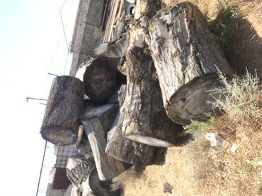 Kömür, odun - Azərbaycan: Kötük  1 kub 140 Azn