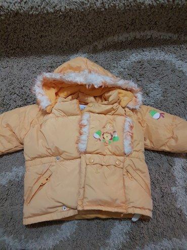 Prelepa jaknica - Sid