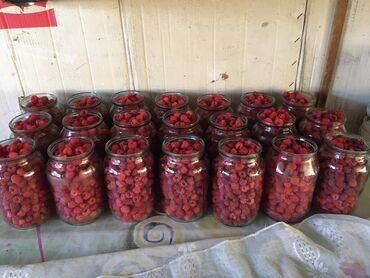 52 объявлений: Продаю малину домашнею не с поля 200сом кг. Село арашан(стрельниково)