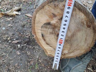 Гранит камень цена - Кыргызстан: Продаю ствол орехового дерева цена: договорная