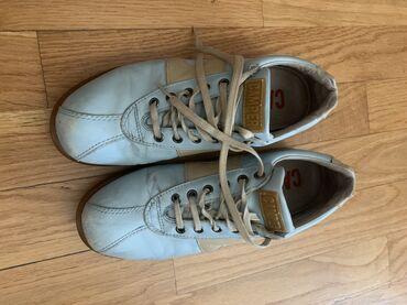 Ženska patike i atletske cipele | Beograd: Camper kožne cipele broj 38 u ok stanju