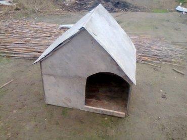 домики для кошек в Азербайджан: Домик
