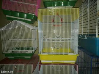 Зоотовары - Кок-Ой: Клетки новые для птиц и грызунов