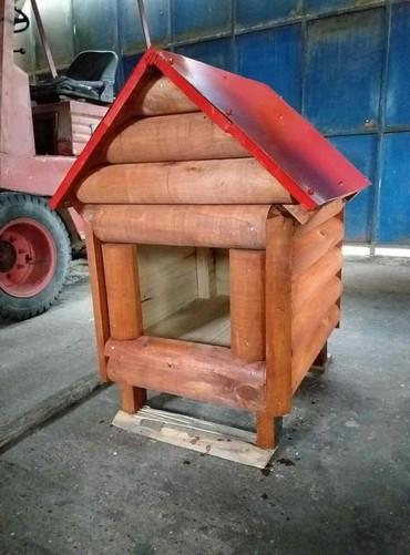 Kućica za pse dimenzije 50x60.Moguća je i narudžbina po Vašim - Belgrade